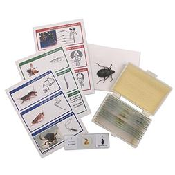 WhizKidsLab 12 Prepared Insect Bug Parts Microscope Slides S