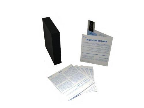 American Educational Microslide Photosynthesis Lesson Set