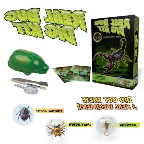 Discover with Dr. Cool Real Insect Excavation Science Kit ,