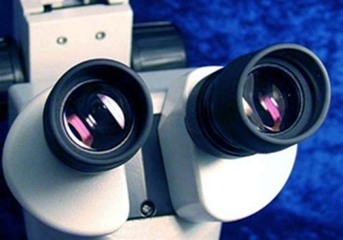 AmScope Microscope, WH10x and Magnification, Objective,